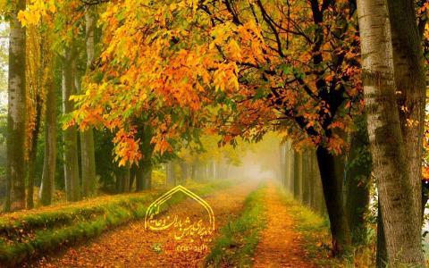 برگریزان پاییز