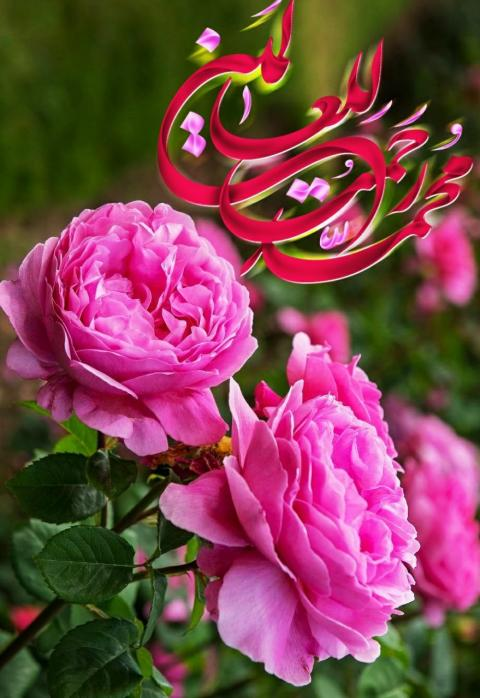 پیامبر اکرم صلی الله علیه وآله وسلم